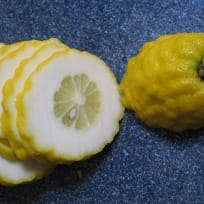 Preserved Etrog (Citron)